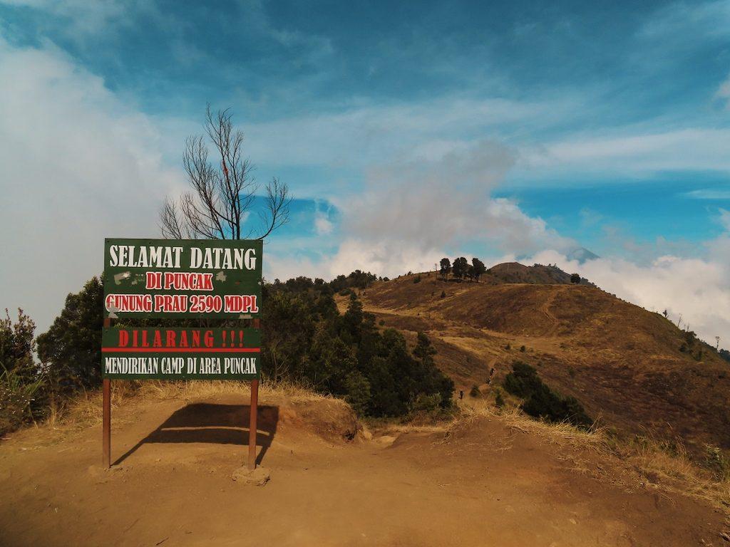 Puncak Gunung Prau 2590 MDPL
